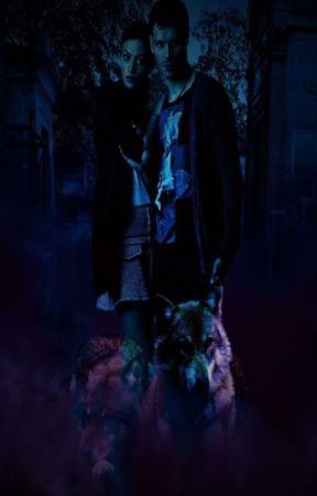 Another Werewolf Hale💜 by ParkJiminMochi24