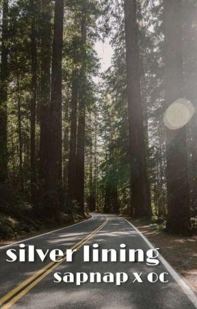 silver lining   sapnap by merakixh