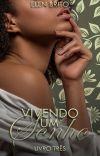 Vivendo Um Sonho [Desejos Ardentes - Livro Três] cover