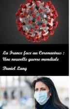 La France face au Coronavirus : Une nouvelle guerre mondiale by LePoetedu88