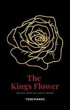 The Kings Daughter //reader x Khun A.A\\ by tsukihanas