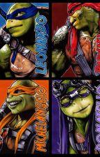 Ninjas & Princesses (TMNT Book 2) by TurtleWolfLover