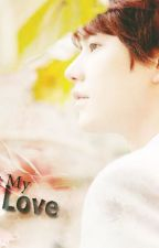 For You My True Love by KyuRaCouple0321