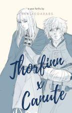 Thorfinn x Canute   Vinland Saga FanFic ✔️ by erenjaegarabs
