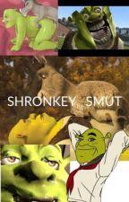 Shrek and Donkey SMUT by MrsPotatoHead03