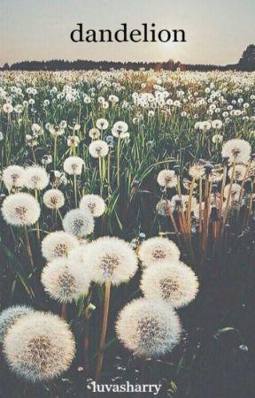 dandelion | h.s by luvasharry