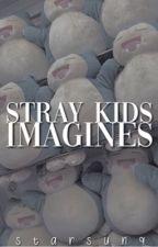 stray kids imagines; by starsunq