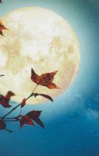 Luz de luna by user18744404