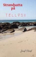 Strandsatta på Tellus 2 av JosefRf