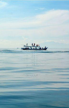 Souvenir Bertema Laut untuk Hari Istimewa Anda by syaifulanam77