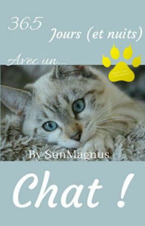 365 jours (et nuits!) avec un chat by SunMagnus