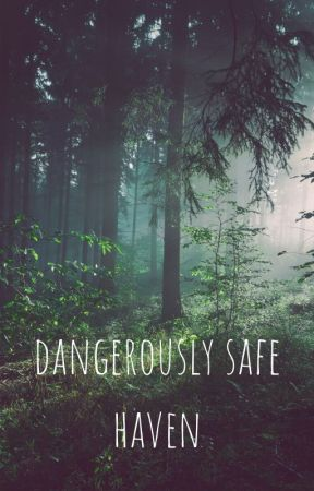 dangerously safe haven by chraboll_15