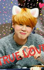 💕💖TRUE LOVE💖💕    [ Jimin × Reader]  Fanfiction by chimchim1316