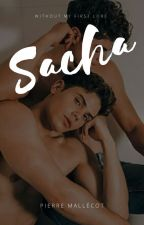 Sacha (T2) par Lepetiitpierro