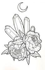 Passiflora by asimpleowl