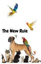 The New Rule by Meepleleep