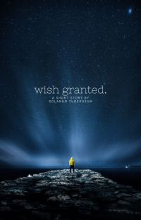 wish granted cover