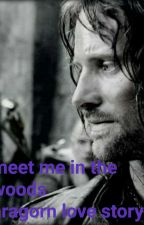 *Meet Me In The Woods * aragorn love story by cherishfallenangel