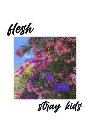 flesh // skz by kthnjjk