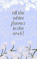 all the white flowers in the world by lumelux