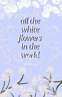 all the white flowers in the world cover