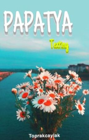Papatya  by toprakcaylakk