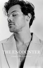 The Encounter |H.S| by harryxsunflxwer