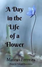 A Day in the Life of a Flower by MatHenFer