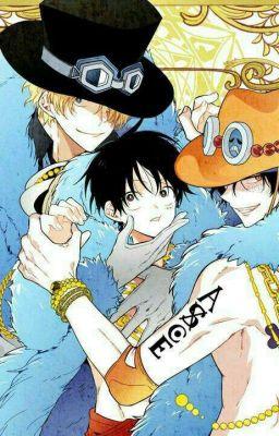 Đọc truyện (ĐN One Piece) Anh trai song sinh của Luffy
