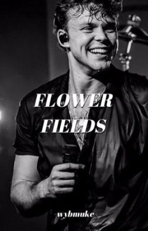 flower fields ➵ lashton by -wayfmuke