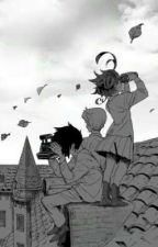 The Promised Neverland x FEM Reader scenerios and oneshots💜(paused) by AngelinaYeager111