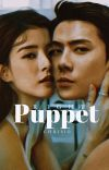 Right Puppet cover