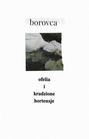 ofelia i kradzione hortensje by borovca