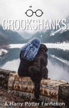 Crookshanks   𝘚𝘪𝘳𝘪𝘶𝘴 𝘉𝘭𝘢𝘤𝘬 by TinaX2