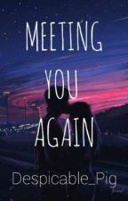 Meeting You Again by Despicable_Pig