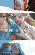 The Princess and Her Knight - A Breath of the Wild FanFiction by nightowl2525