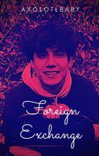 Foreign Exchange ~ Jaden Hossler? by axolotlbaby