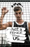 Just a fence between us | Kai Havertz cover