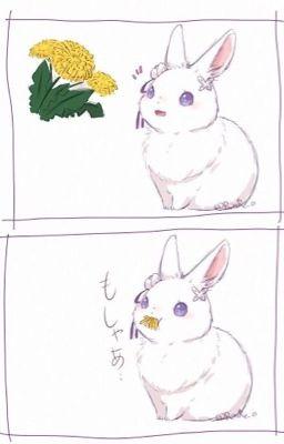 [ ĐM - EDIT/HOÀN ] Ôm một bé thỏ nhỏ - Xt Tiểu Triệt