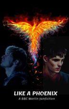 Like a Phoenix by rageynerd