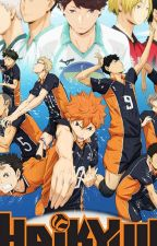 Haikyuu X Reader (Various Chars X Reader) by Ayano39