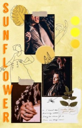 Sunflower || A Harry Styles A.U. COMPLETED  by ireallylikekiwis