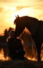 Nyckeln till Landet i fjärran av HorsesInMyLife