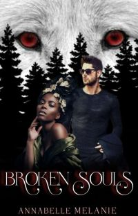 Broken Souls(BOOK #1 OF THE SOULS SERIES) ON HOLD cover
