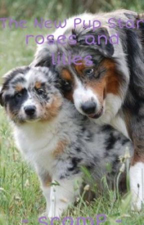 Pup Star: The New Pup Star 2: Roses and Lilies by AngelxScamp