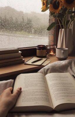Đọc truyện 【 Book Review】Cuốn sách hôm nay mình mở