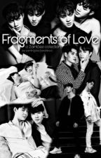 Fragments of Love: A ZaintSee Collection by aaxbbxx