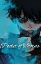 ~Pocket Of Thorns~ A My Hero Academia Fanfic by LoveTheif15