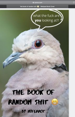 THE BOOK OF RANDOM SHIT by M8Ferrot