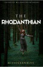 The Rhodanthian   ongoing by missoceanblue_